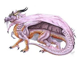 Purple Dragon by Sheranuva