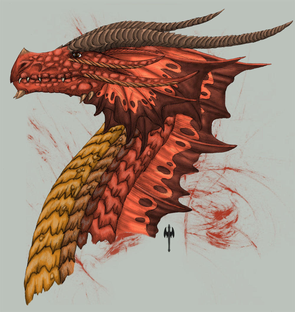 AVATAR POUR TOUS Red_Dragon_Head_Side_view_by_Tarjcia