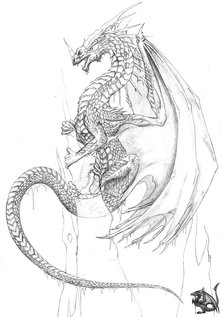 Ice Dragon Scrap by Sheranuva on DeviantArt