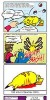 The Wild Pokemon 'fainted'