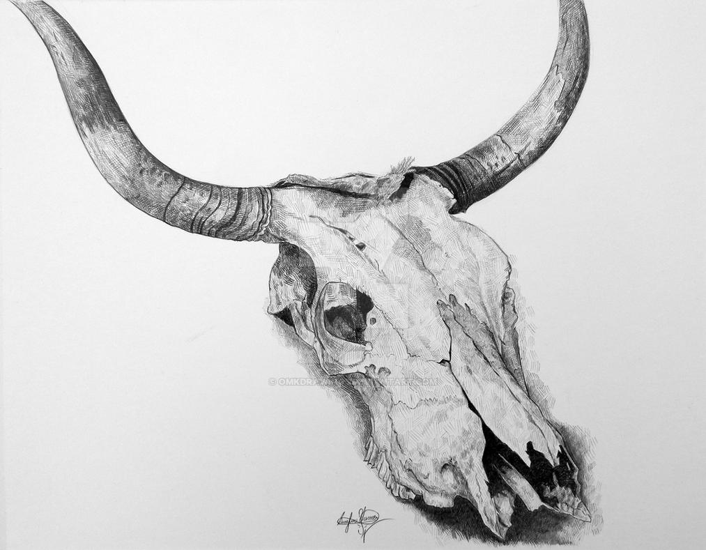 Cow Skull Drawing | www.imgkid.com - The Image Kid Has It!