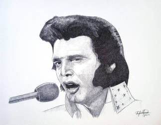 Elvis Presley The King of Rock