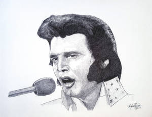 Elvis Presley The King of Rock