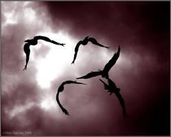Black Kite Gang by CoupeKid