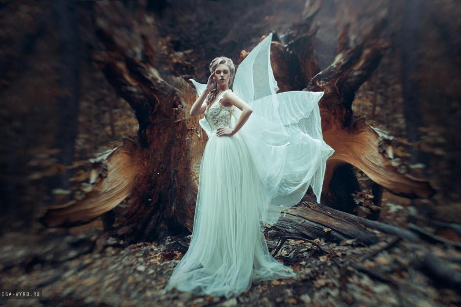 Wings by Isa-Wyrd