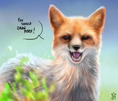 What does the fox say...?! by NImportant