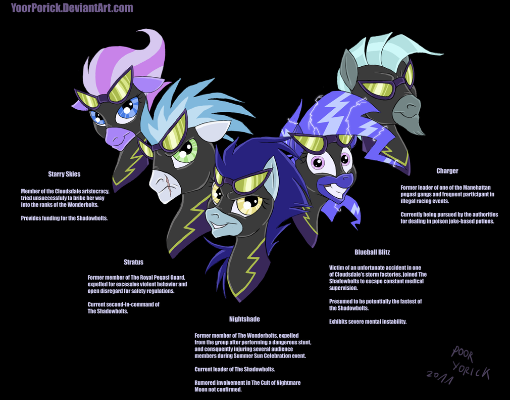 Shadowbolts Group Picture Bio by nightshadepony