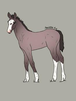 Mystery Foal 01 -Open-