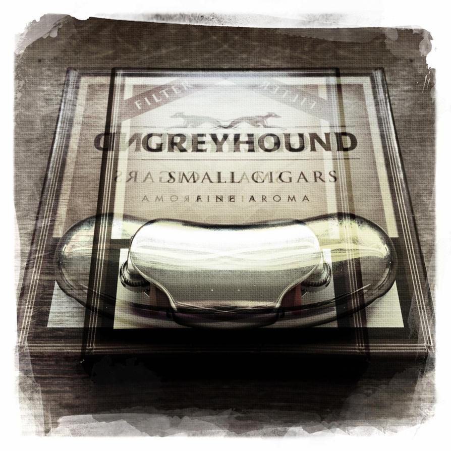 GREYHOUND by vw1956