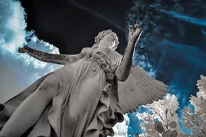 angel1 by vw1956