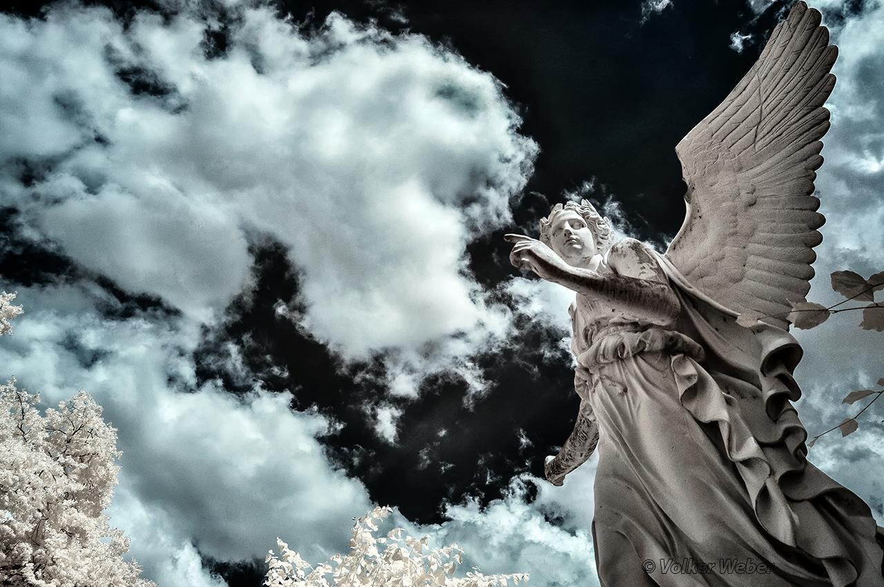 angel2 by vw1956