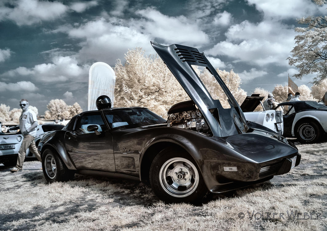 Corvette Sunday I by vw1956