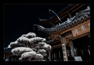 Chinese Teahouse II