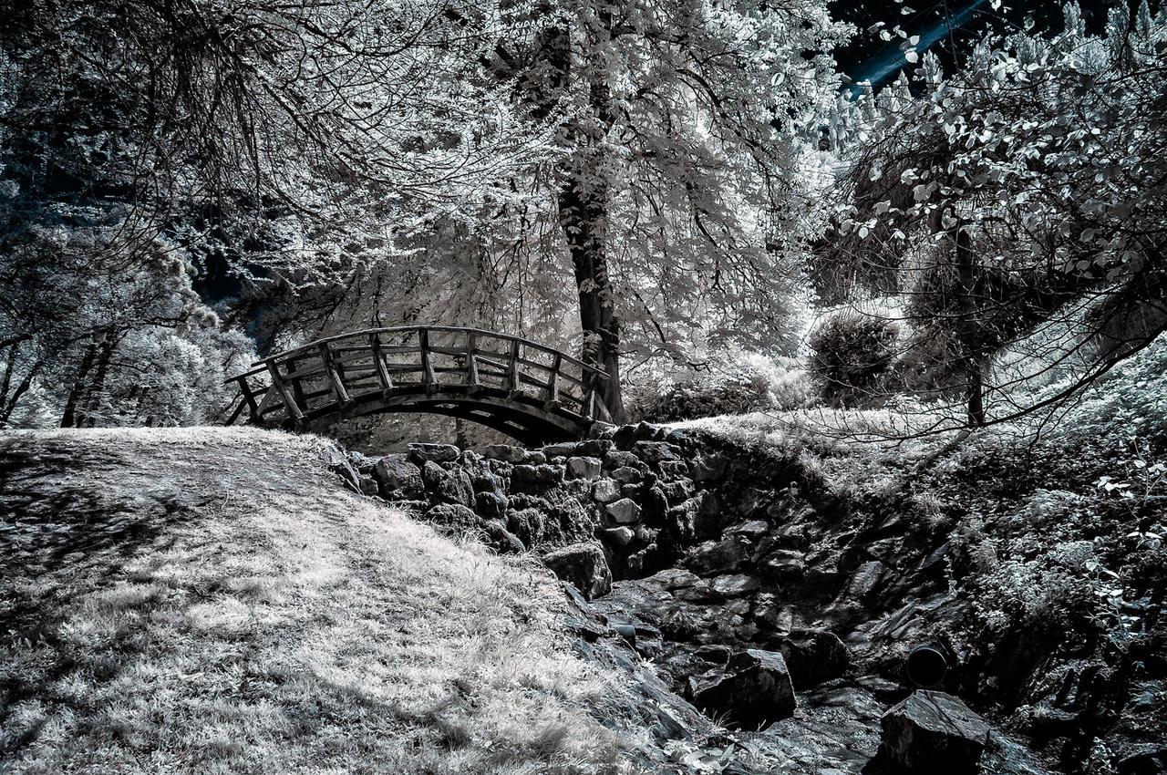 Wooden bridge III by vw1956
