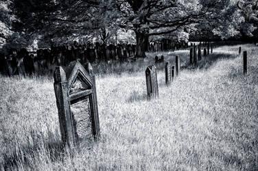 graveyard... by vw1956