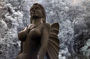 no angel by vw1956