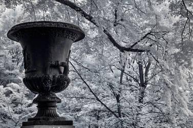 vase by vw1956