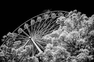 ferris wheel 2017 by vw1956