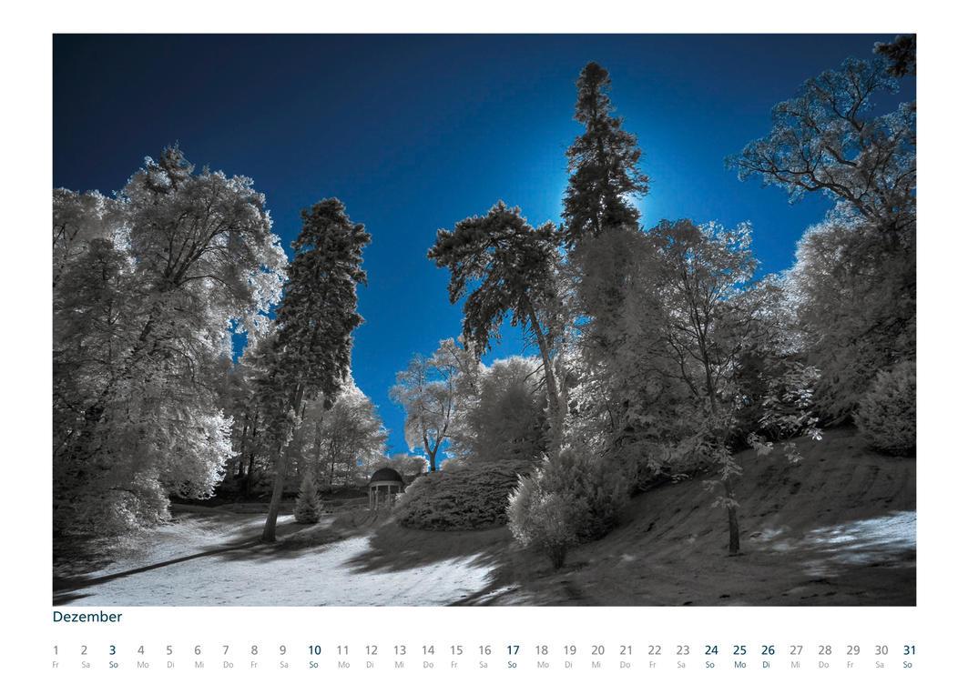 IR Calendar 2017 - Last one by vw1956