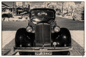 Packard 8 Front by vw1956