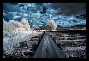 rails by vw1956