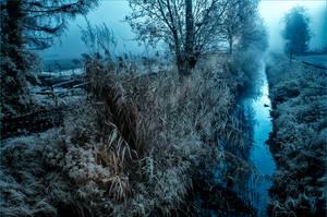 foggy morning by vw1956