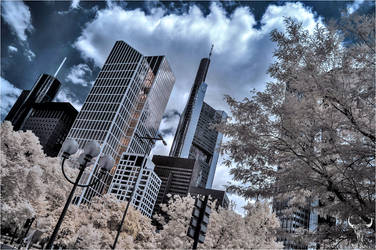 in the city by vw1956