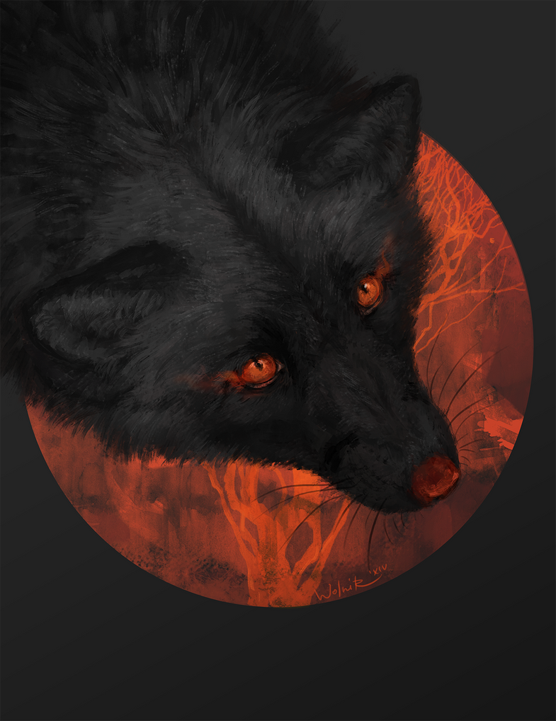 Pure fire by Wolnir