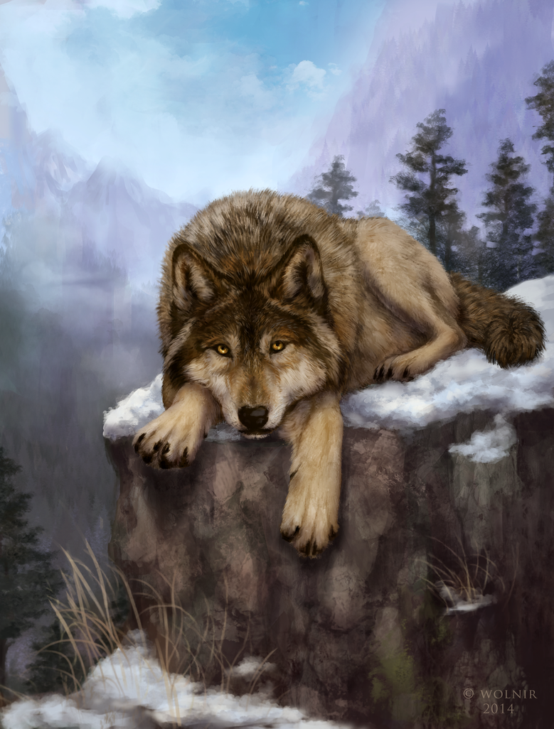Solitary king (not a photo) by Wolnir