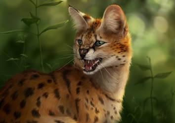 Snarling Serval  [art] by Wolnir