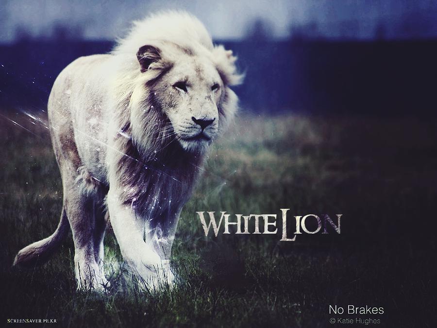 white lion wallpaper by hidore on deviantart