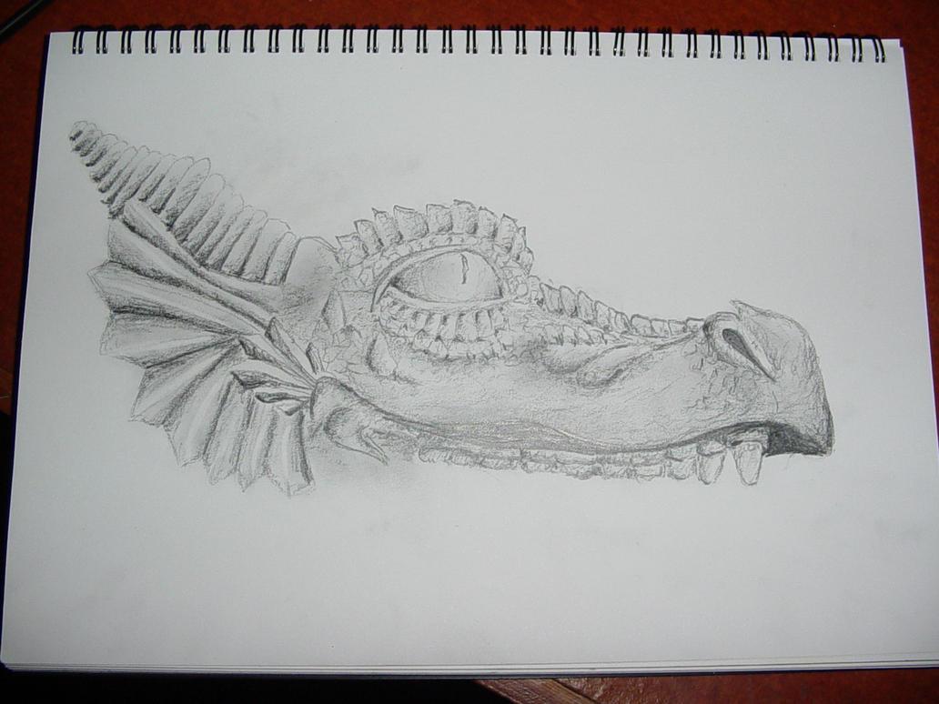 Dragon Head. by zenkatydid