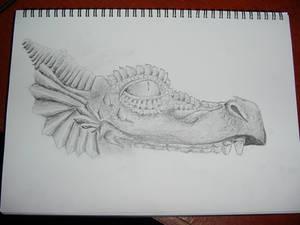 Dragon Head.