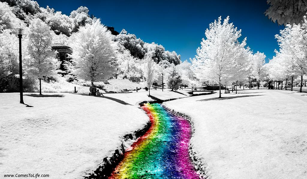 Taste the Rainbow by zoomzoom