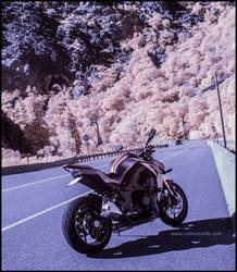 Z1000 Infrared by zoomzoom