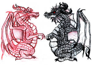 Red and black dragons