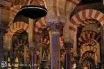 Cordoba: The Great Mosque (Shot three)