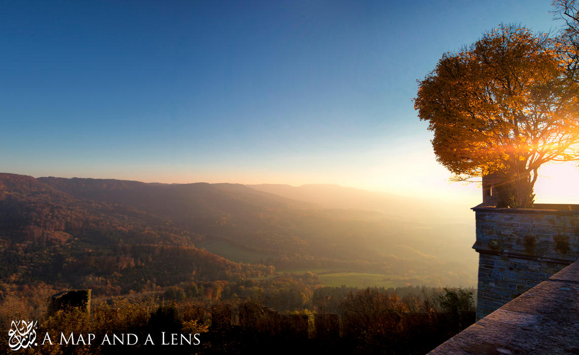 Hohenzollern Castle: The Tree by Mgsblade