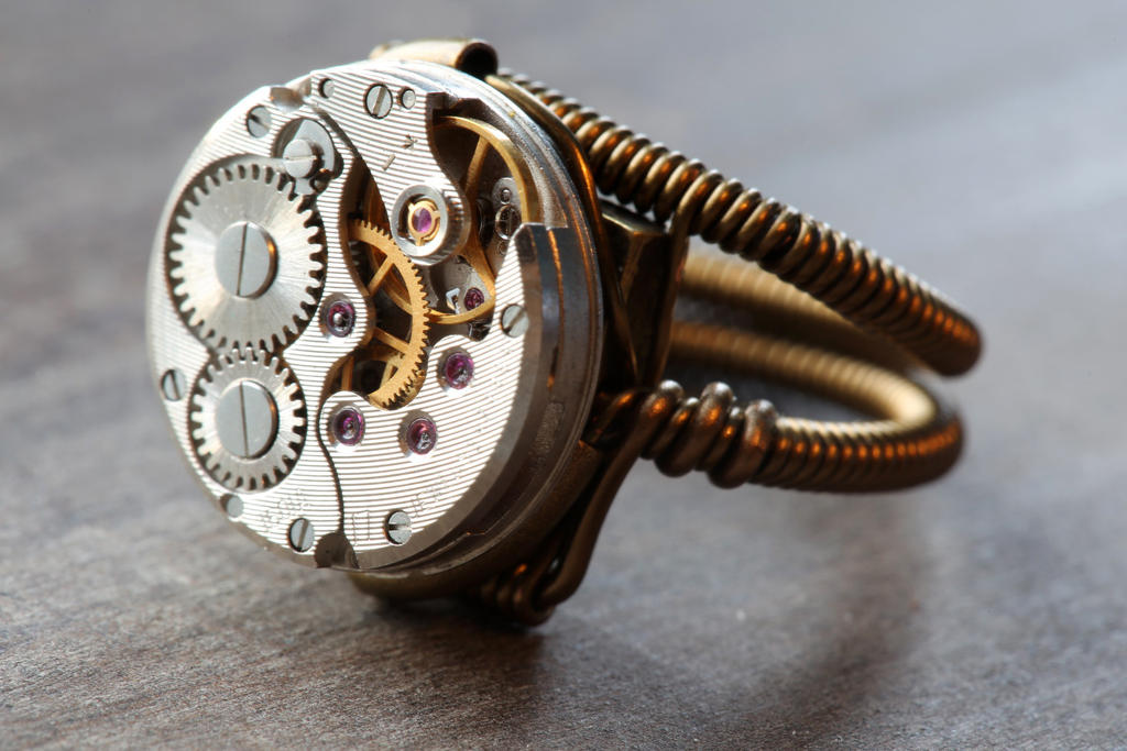 Steampunk Ring by CatherinetteRings