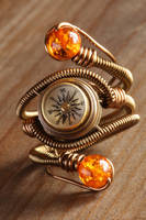 Steampunk compass ring by CatherinetteRings