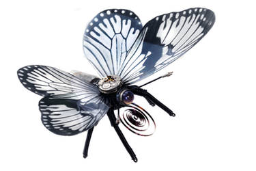 Steampunk Butterfly - Monochrome