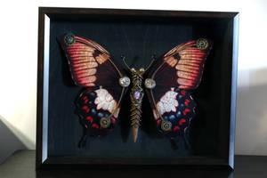 Steampunk butterfly no.7