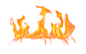 Flames on a transparent background. by PRUSSIAART