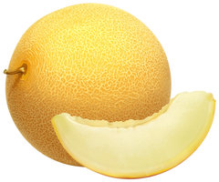 Ripe melon on a transparent background. by PRUSSIAART