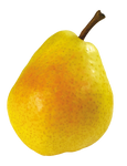 Juicy pear on a transparent background.
