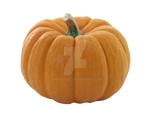 Ripe pumpkin on a transparent background.