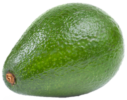 Avocado on a transparent background. by PRUSSIAART