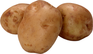 Potatoes on a transparent background.