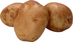 Potatoes on a transparent background. by PRUSSIAART