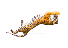 Tiger in a jump. by PRUSSIAART
